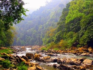 River Trekking at Neora Valley National Park