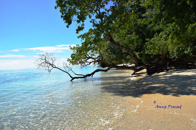 The Andaman: Rendezvous with Indian Archipelago
