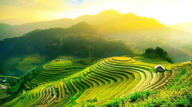 Bali.. The Jewel of Indonesia