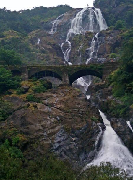 Stay Hungry and Stay Foolish - Goa & Konkan