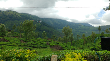 Munnar: God's Own Country