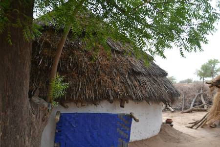 Vintage Voyage to the Blue City - Jodhpur