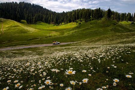 7 Days, 442km: Exploring Sufi Trails And Wazwaan Wonders In Kashmir