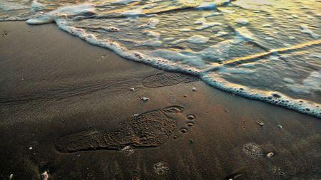 Marooned In A Virgin Beach!