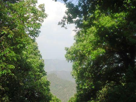 In Between The Hills- Pangot