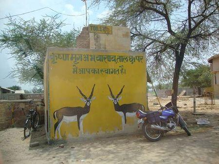 Tal Chhapar Sanctuary Trip