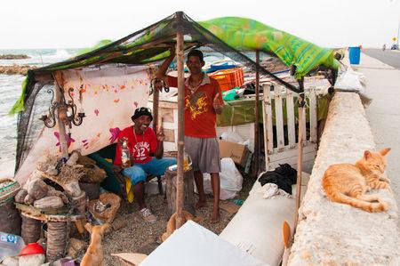 Isla Baru: the Caribbean Coast of COLOMBIA