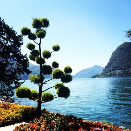 """La Dolce Vita"" combined with Swiss Efficiency: Lugano"