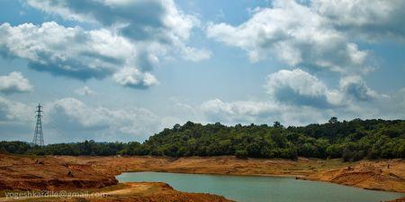 Eerie Jungle - Mattaga backwaters