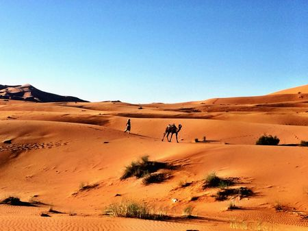 Sleeping Under The Stars On A Sahara Desert Tour