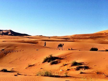 Sleeping Under The Stars On A Sahara Desert Tour