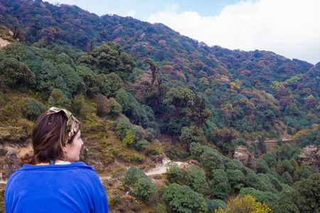 Himalayan Autumn Colours