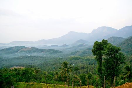 Through the roads of the western ghats - Wayanad