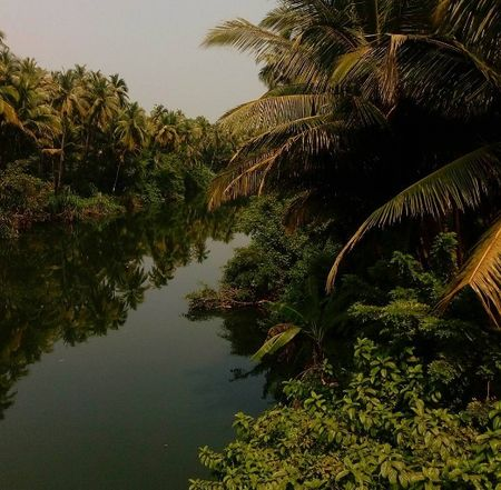 The Other Side of Goa