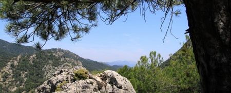 Go Wild In Southern Spain : Ten Of My Favourite Wild Spaces In Andalucia