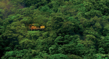 Best Eco-Resorts in India For Travellers Who Have Big Pockets And Care For The Environment