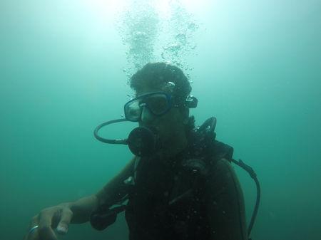 Oblivious near the ocean in Andamans