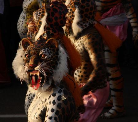 Thrissur Tigers