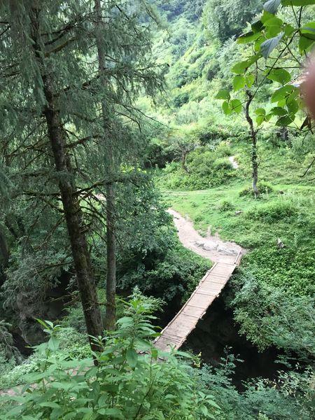 The hippie trippie trail to Kheer Ganga