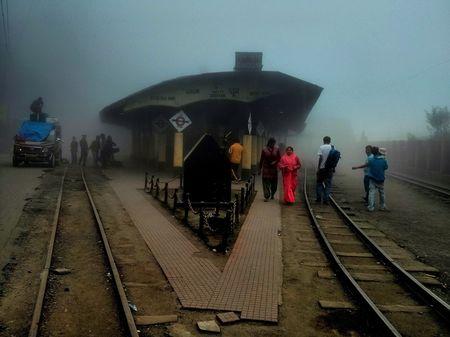 Tea, Turf and Toy Train: Darjeeling