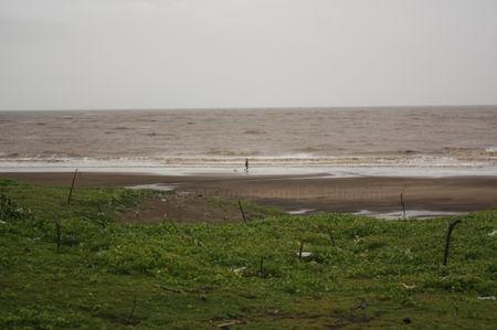 Bordi beach : The Weekend Getaway From Mumbai