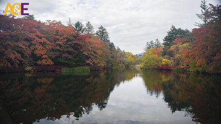 Japan - Of Politeness & Offbeat Hokkaido