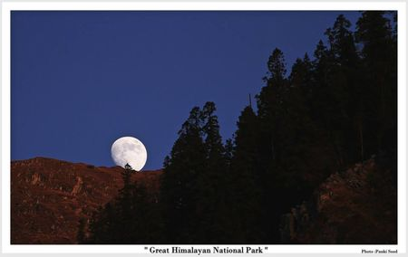 Great Himalayan National Park - Into Wilderness