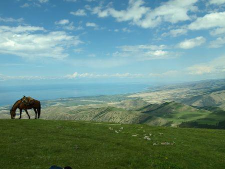 A Shepherds Life- Kyrgyzstan