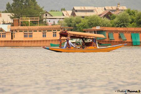 Kashmir/ Ladakh - A drive through heaven!