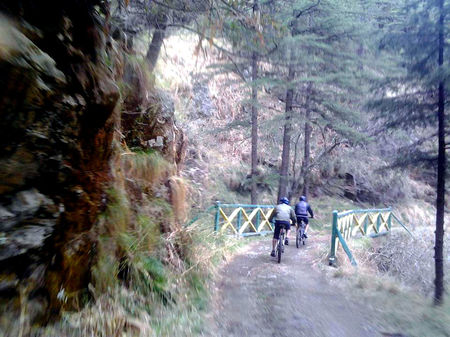 11 Must Do Hiking And Cycling Experiences In Shimla