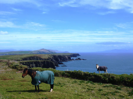 WILD ATLANTIC WAY: SLEA HEAD DRIVE