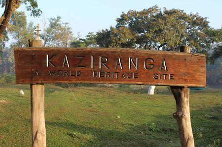 North-East Diaries- Kaziranga National Park