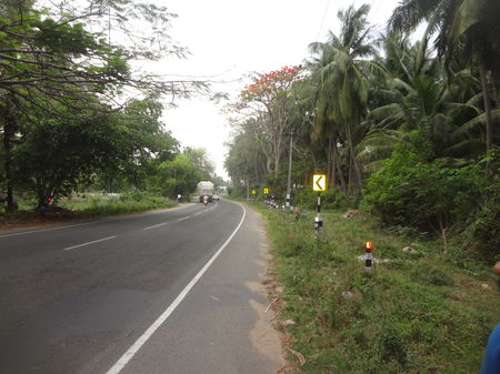 A Bike Ride in Western Ghats - Valparai