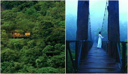 Through The Hanging Bridge & Into The Woods: Visit This Mystical Heaven Hidden In Kerala