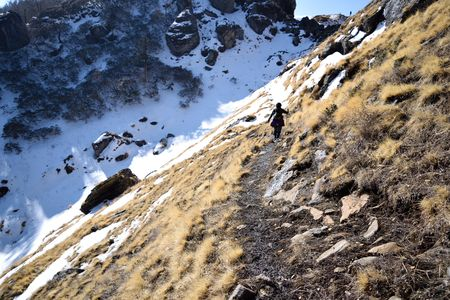 Kuari Pass: Where Eagles and a Few Brave Trekkers Dare