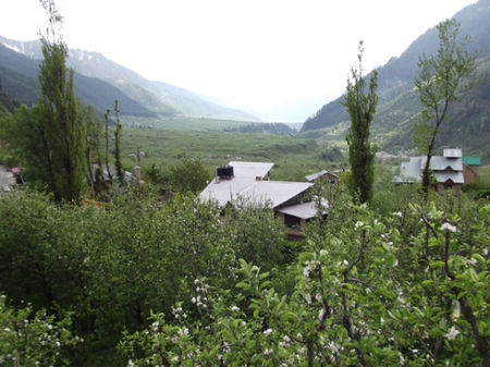 There's another, darker side to Manali, and it's all here. Read at your own risk!