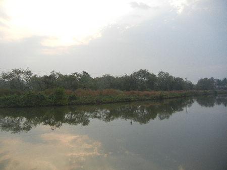 Goa with peace