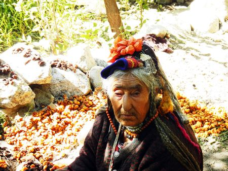 Decrypting the Lost Tribes of Himalayas: Twigs for tweets!