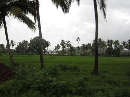 48 hours, South Goa and Rains!!!