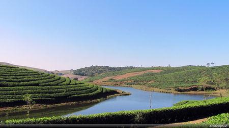 Enchanting Vagamon Hills of Kerala
