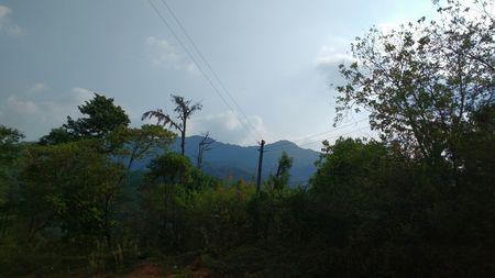 Road trip to dandeli through Western coast