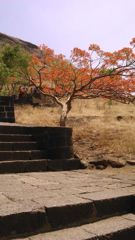 The Ashtvinayak Darshan of Maharasthra
