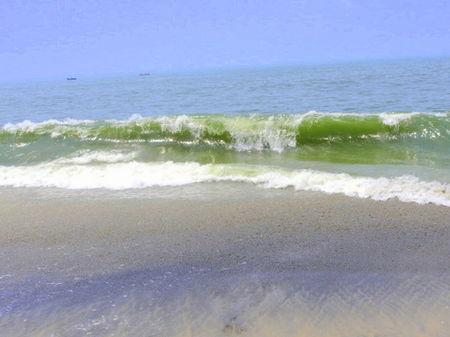 A day in the beach - Alappuzha, Kerala