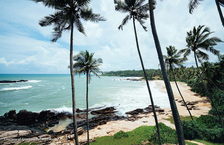 A Comprehensive Guide To Exploring Sri Lanka's Finest Landscapes and Heritage Sights