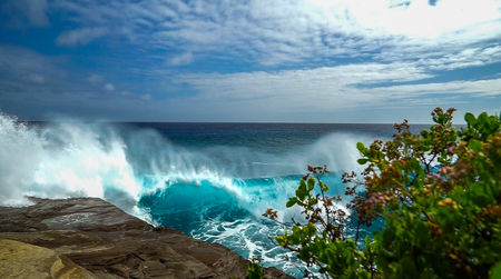 Big Wave Surfing at China Walls on Oahu, Hawaii