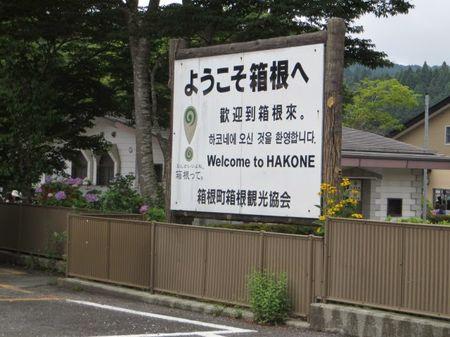 Day Trip to Mt Hakone