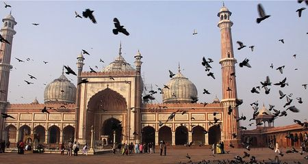 Top 8 Things To Do In Delhi