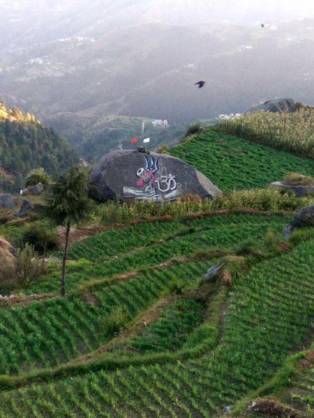 Churdhar ki Chandni; 3647mtrs summit