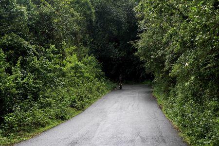 A Scenic Hill Station Near Bangalore: Scotlandish Coorg