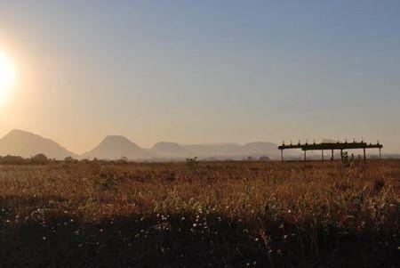 Dolce Vita in the vineyards of Nashik